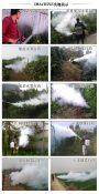 英达水雾烟雾机果园打药机 射程高喷洒均匀