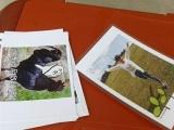 一元照片打印复印一体机