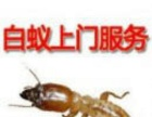 中山白蚁防治、灭白蚁、灭臭虫、杀虫灭老鼠、灭四害