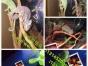 滨州批发零售萌宠类、冷血类、爬虫类、宠物龟、爬虫用品、龟药