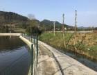 铜梁80余亩精修 水产养殖场 转包