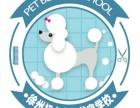 徐州初心宠物美容培训学校