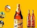 生力蓝星啤酒加盟 名酒 投资金额 5-10万元
