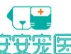 宠物医院司机