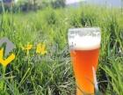 中酿10吨小型啤酒厂设备可以酿造无醇啤酒吗