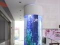 专业承接大型亚克力鱼缸订做/假山园林制作工程
