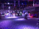 大型冰雕展制作出租冰雕展展览全国各地租赁厂家直销