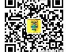 秦风美术培训学校 东郊幼儿美术培训 美术班