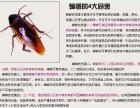 济宁家庭酒店有蟑螂怎么办怎么清除蟑螂有好办法只需一分钟
