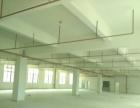 惠阳新圩新建远房东标准厂房楼上1000平低价出租