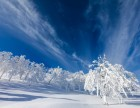 到东北去看雪:茂名旅游,东北三省赏雾凇冰雪精华之旅