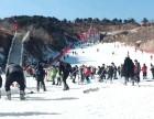蓟洲滑雪场一日游