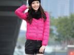 2013冬新款棉衣棉服女装韩版修身羽绒棉衣短款带围脖专柜正品