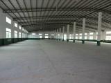 单一层滴水8米高钢构厂房2650平方出租