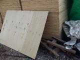 出售太阳能胶合板夹板规格1.1米x1.7m米