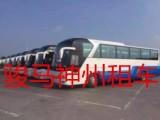通州西集旅游巴士租车提供22-55座各种大巴客车出租