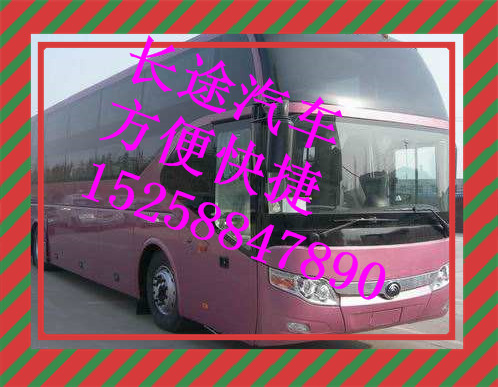 从 临海到石狮大巴车/豪华客车 15258847890+班次
