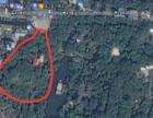 贡井11亩地皮商业用地出让土地无抵押无贷款诚意急售