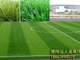 人造草坪足球场尺寸 足球场人工草皮施工