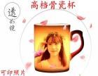 哈尔滨活动礼品制作水杯印图批发马克杯T恤印图