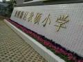 深圳观澜植物租摆 花卉绿植 绿植盆栽出售