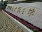 深圳西乡精美花盆瓷盆出售