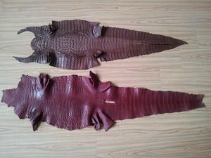 要买鳄鱼皮好不好,就到如皋市海宏皮革制品_鳄鱼皮好不好