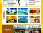 移动通讯广告地区销售项目