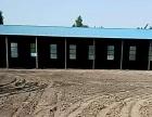 8亩费县镇探沂镇229省道路西 1500平米 钢结构
