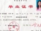 网络教育的优势 东营名轩教育
