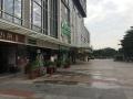 奥园广场 人气商业街 不需要顶手费 全新装修好