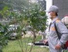 东莞市清洁公司、室内清洁、外墙清洗、石材翻新