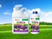 实惠的水果专用肥供应尽在第五元素葡萄专用肥厂家