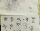 太仓素描 系统的素描的学习