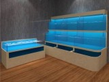 廣東洋清魚缸廠 大型魚缸定做 大型觀賞魚缸設計-洋清水族