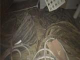 优秀示例 变压器电缆线回收临沂