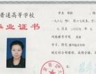 北京语言大学 春季招生培训