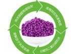 重庆甲醛检测甲醛治理公司价格醛扫净很满意