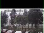 专业承接汽车GPS远程视频4G定位设备