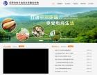 湖南品牌创意型网站哪家价格优惠