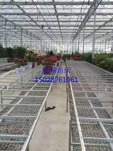 河北安平温室移动苗床网厂家