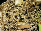 平顶山鲁山本地高价回收 抵押表 包 黄金 钻石 奢侈品