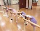 北京西城区少儿芭蕾舞蹈培训班