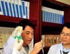 气触媒技术除甲醛,国际领先技术