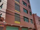 同集路禹州大学城附近自建房5层每层430