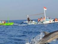 巴厘岛从南到北,6天5晚自由行