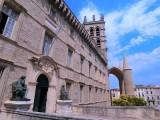 法国蒙彼利埃大学在职博士10月开课 人力资源与企业社会责任