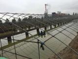优质养殖大棚选万和温室-连栋育苗温室建设