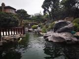 成都鱼池景观造景