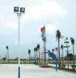 好的广西球场灯杆由南宁地区提供 防城港球场灯杆